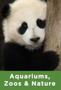 zoo, aquarium