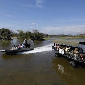Wilton Manors, Florida, kayak, manatee, wildlife, sports, things to do, travel, family, fun, kids, children, coupon, coupons, discount,