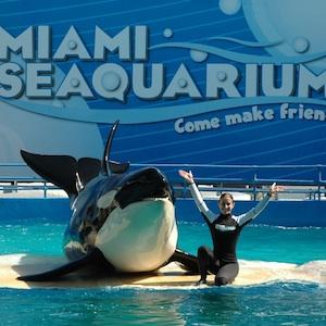 Miami, Florida, aquarium, zoo, manatees, travel, things to do, family, fun, kids, childen, coupon, coupons, discount