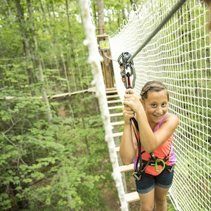 Savings coupon for Go Ape Bemis Woods in Western Springs, Illinois - zip lines, cargo nets, aerial ropes and more!
