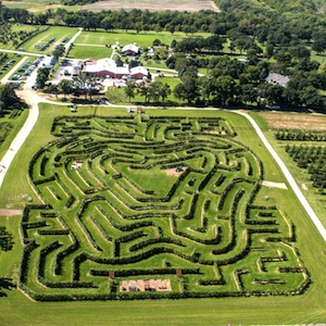 Savings coupon for Royal Oak Farm in Harvard, Illinois is an apple farm with an apple tree maze, 20,000 apple trees, pumpkins, fruits and vegetables.