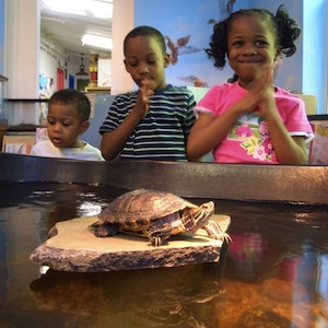 Annapolis, Maryland, children's museum, museum, travel, things to do, family, fun, kids, children, coupon, coupons, discount