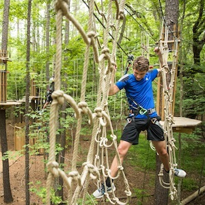 Savings coupon for Go Ape Blue Jay Point in Raleigh North Carolina - cargo nets, zip lines, swings, bridges and more