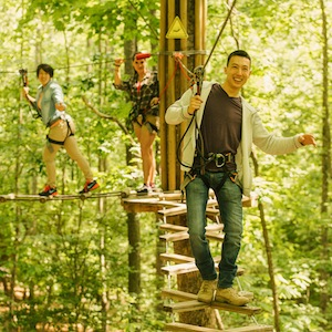 Savings coupon for Go Ape Oak Point Park in Plano, Texas - outdoor adventure