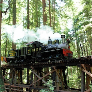 Felton, Santa Cruz, California, railroad, train, ride, steam trains, Redwoods, travel, things to do, family, fun, kids, children, coupon, coupons, discount