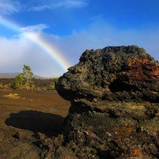 Savings coupon for the Kilauea EcoTours on the Island of Hawai'i, the Big Island - walking tour, hiking tour
