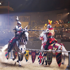 Gets savings coupon for Medieval Times Dinner & Tournament in Kissimmee, Florida